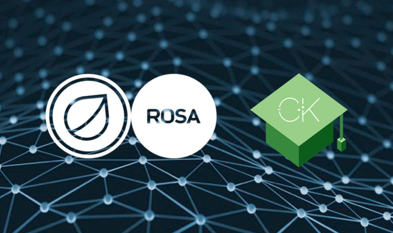 Read more about the article ОС Роса запустила первую программу подготовки специалистов для отечественного программного обеспечения